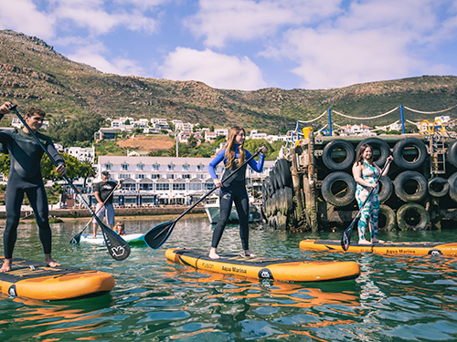 Paddle Board Group Sessions